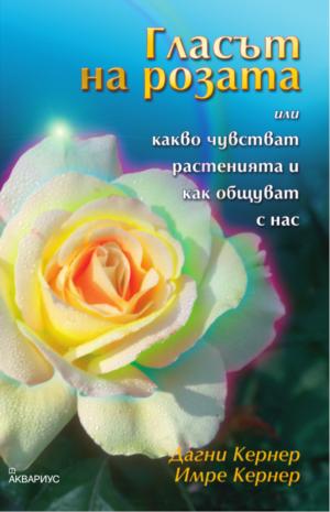 Гласът на розата